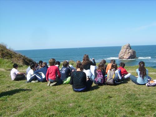 Observation des falaises